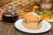 Easy Blueberry Muffins With Non Fat Dry Milk